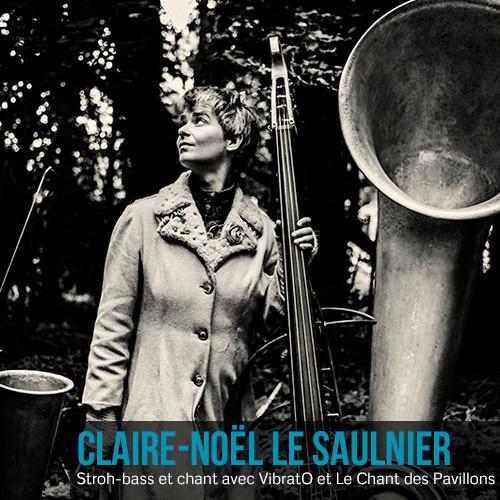 Claire-Noël Le Saulnier